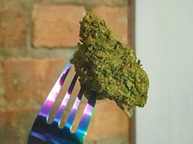 cannabis herb on a fork, you are what you eat