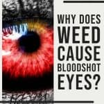 Why Does Weed Make Your Eyes Red? 1