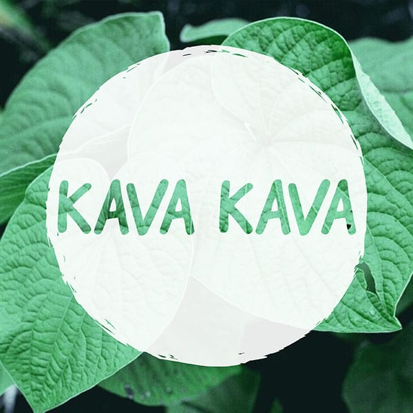 Kava Kava leaf with writing on top